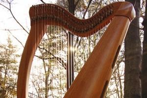 arpa celtica strumento musicale