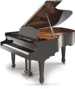 pianoforte a coda acustico : digitale e verticale