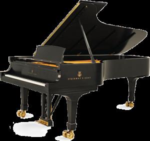 steinway & sons pianoforti a coda