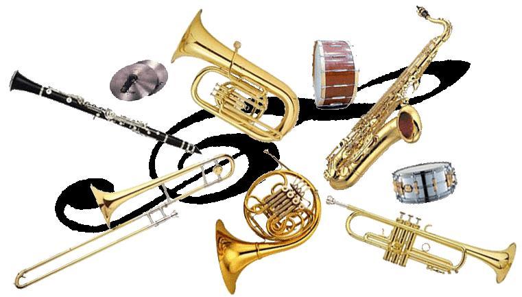 vendita strumenti musicali online